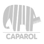 FK_Logo_150px_Caparol_1c